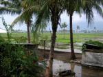 017.Timor-Leste-Sekarang-PEACE2