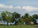 023.Timor-Leste-Sekarang-PEACE